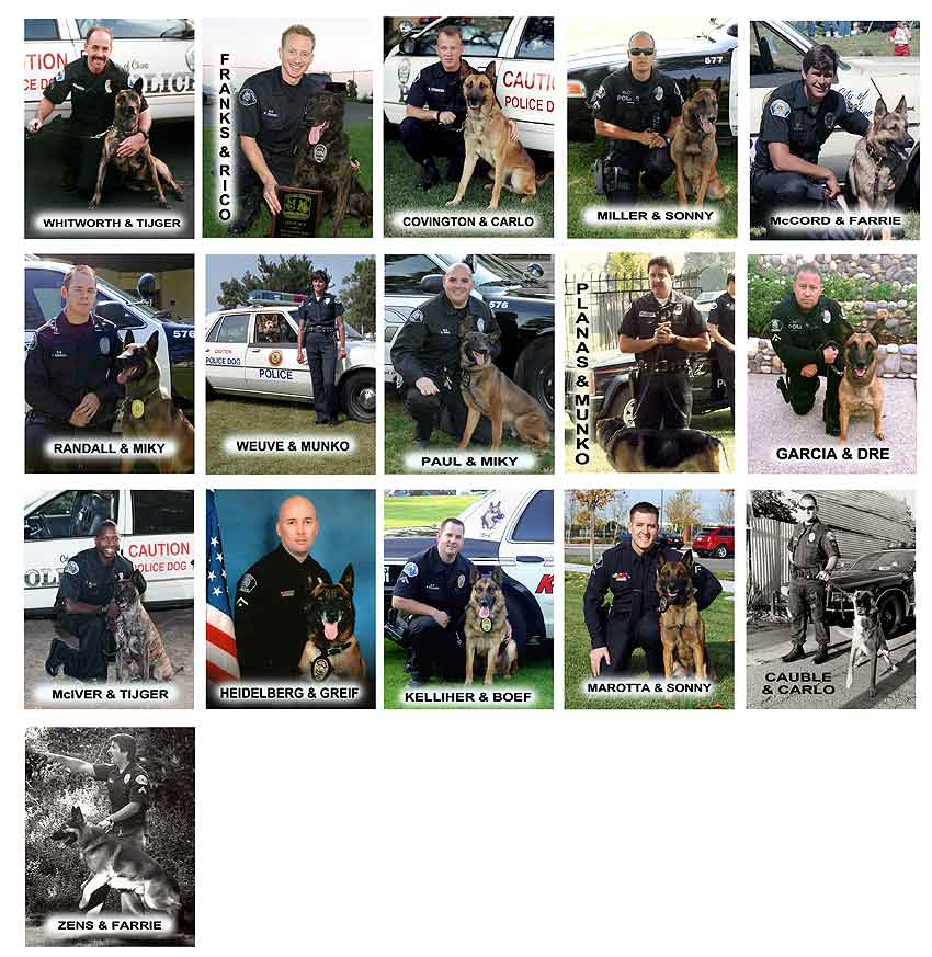 Chino PD - K-9 's                 and Handlers