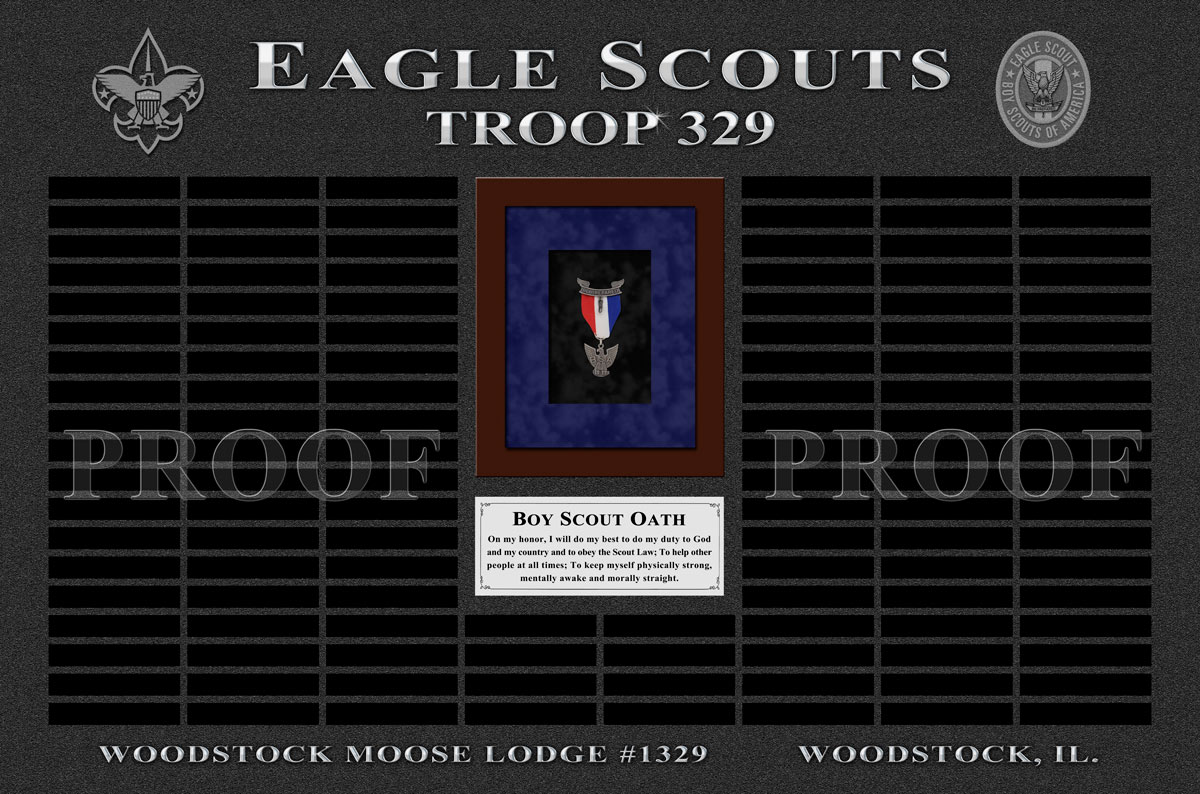 Eagle           Scout Troop 329