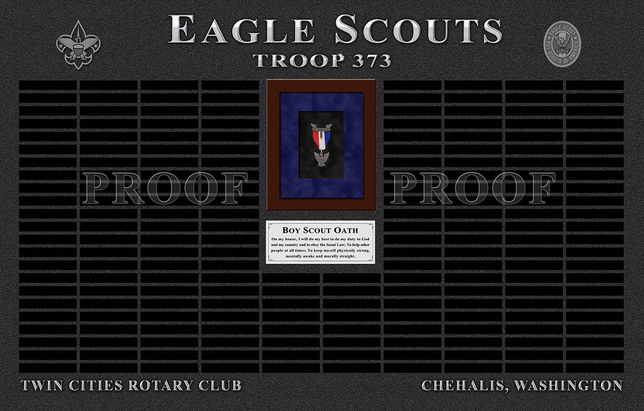 Eagle           Scout Troop 373
