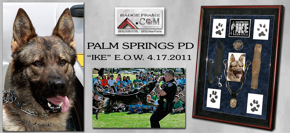 Palm                 Springs PD - IKE