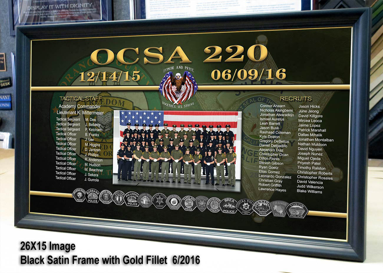 badge frame, ocsa, sheriff, academy