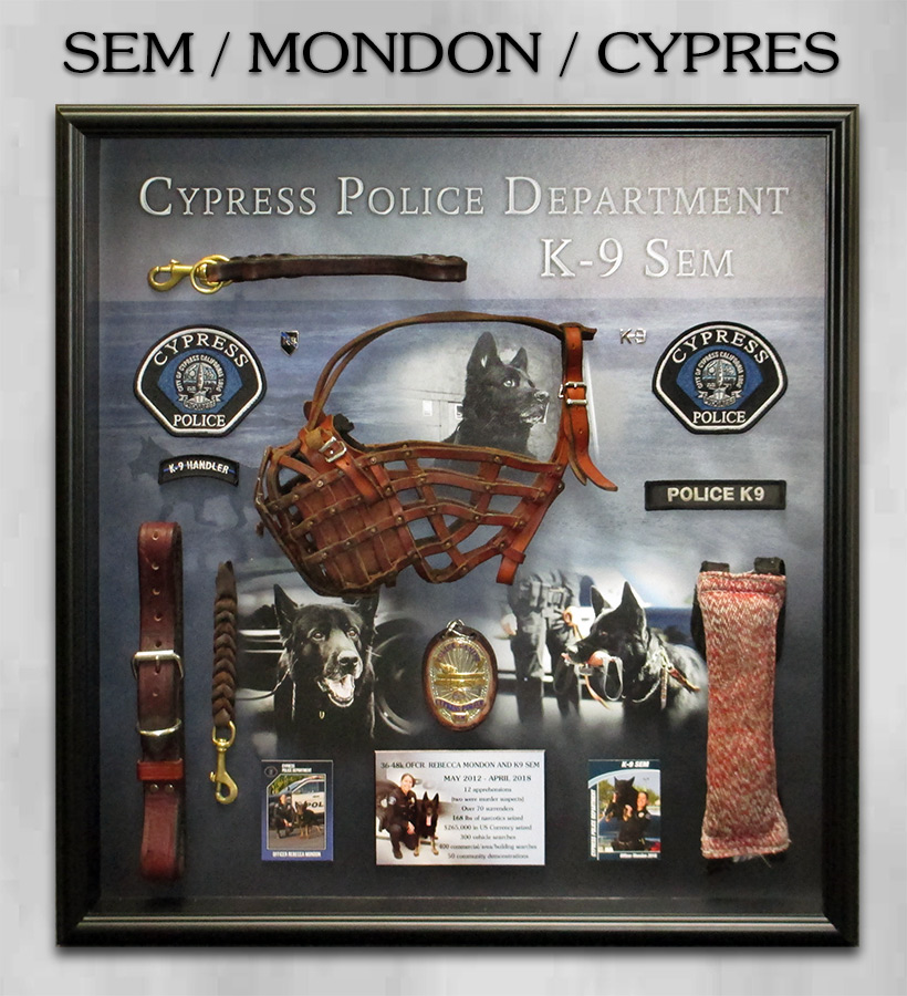 K-9 SEM / CYPRESS PD