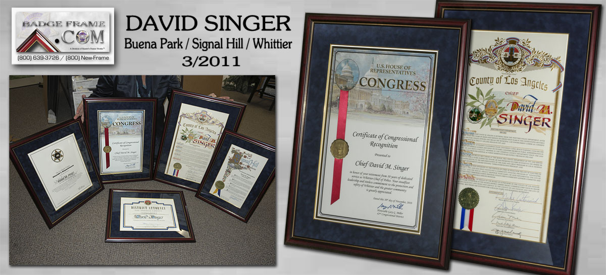David Singer - Certificates