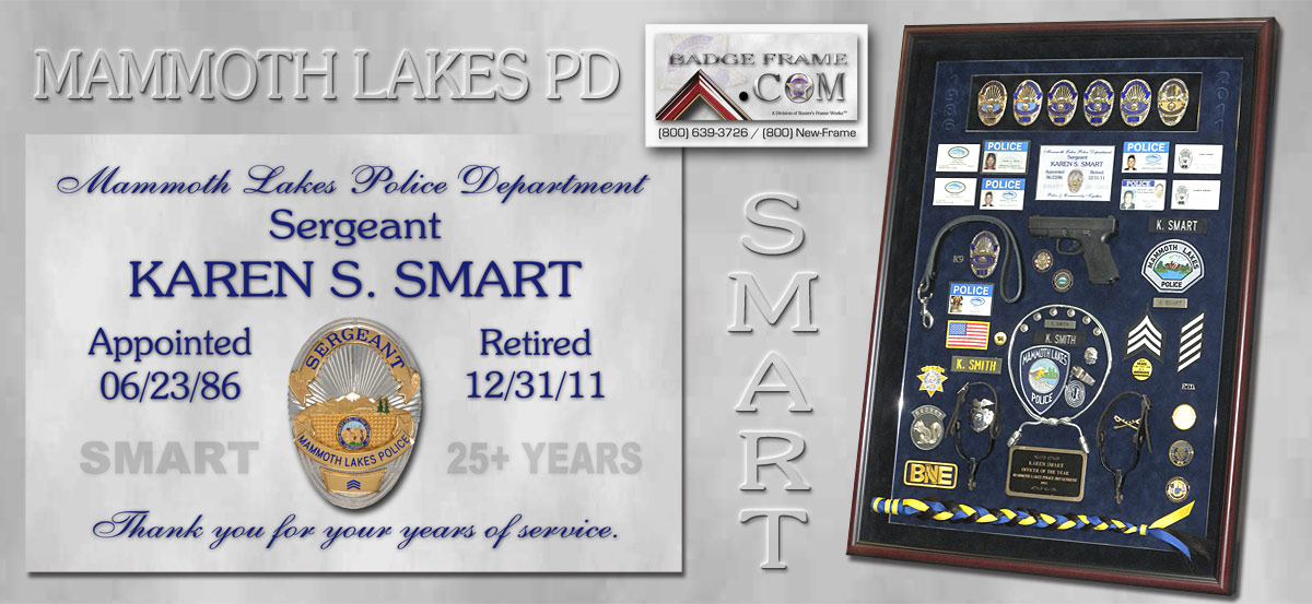 Smart - Mammoth Lakes PD