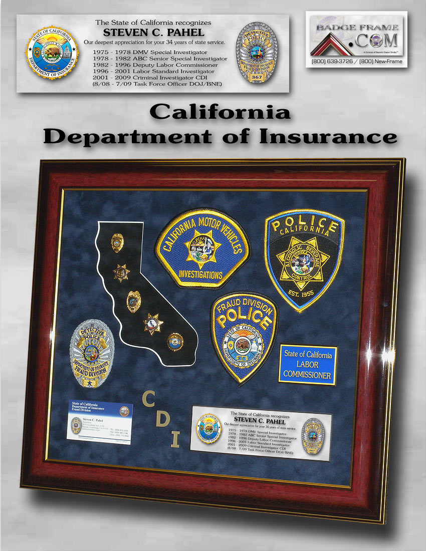 California Department Of Insurance Framed Projects